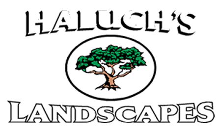 Haluch's Landscapes